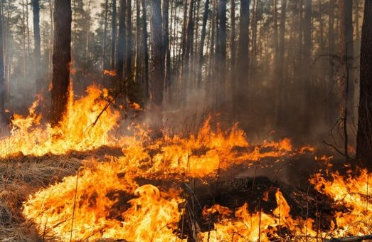 На минулому тижні на Харківщині було ліквідовано 763 пожежі