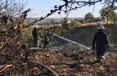 Мешканці Харківщини спричини 54 пожежі у природних екосистемах