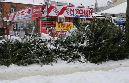 На Харківщині борються з незаконною торгівлею ялинками