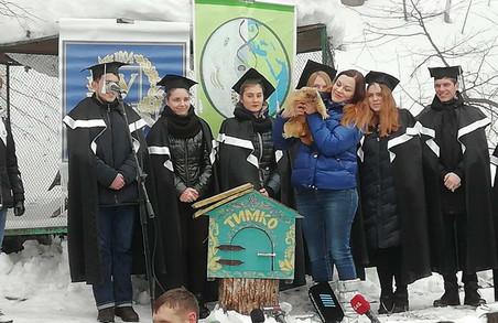 Харківський бабак-синоптик Тимко ІІІ напророкував холодну весну (ФОТО)