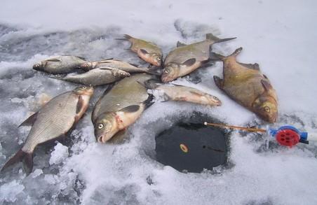 Харків'янам радять відмовитися від зимової риболовлі