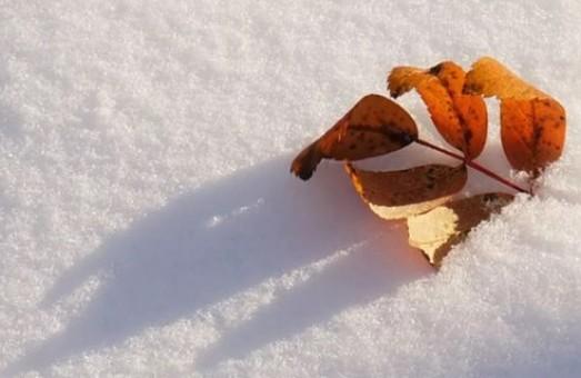 Ще не весна: харків'ян на вихідні очікує сніг та мороз