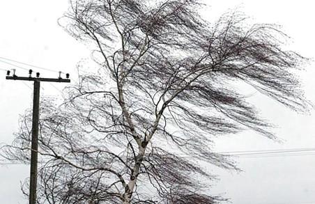 Харків'ян попередили про сильні пориви вітру