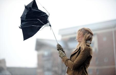 Харків'ян попереджують про сильні пориви вітру