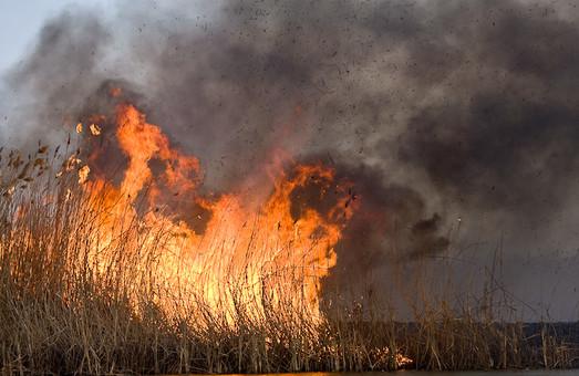 Випалювання сухої трави на Харківщині призвело до 83 пожеж