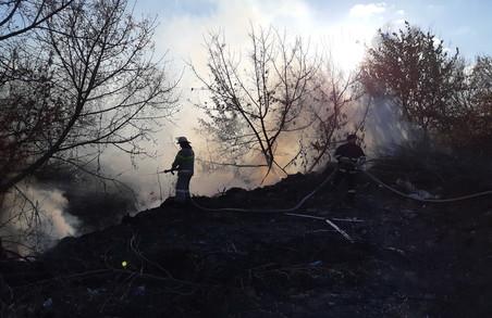 На Харківщині внаслідок випалювання сухостою сталося