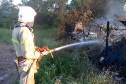 На Харківщині підпал сухостою став причиною великої пожежі