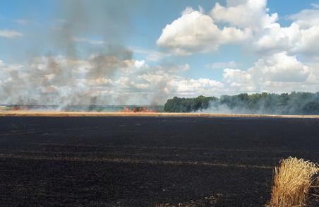 На Харківщині за добу рятувальники ліквідували 22 пожежі та загоряння в природних екосистемах