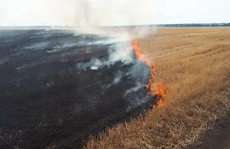 На харківському фермерському господарстві сталася пожежа