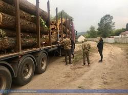 На Харківщині СБУ спіймала «чорних лісорубів» (ФОТО, ВІДЕО)