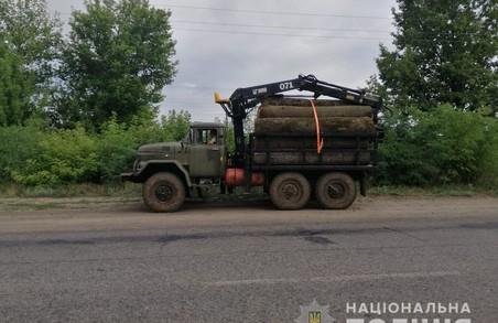 На Харківщині триває незаконна вирубка дерев