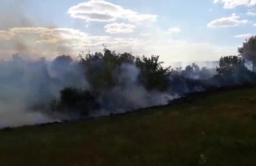 За добу на Харківщині спалахнуло 20 пожеж