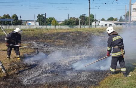 На Харківщині випалювання сухостою призвело до пожежі