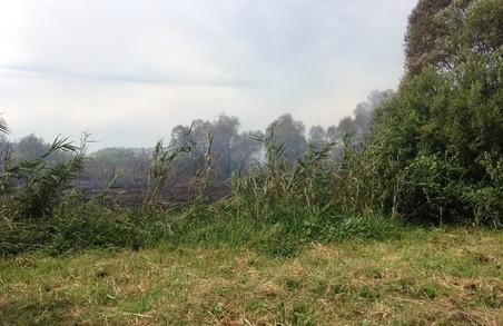 За добу на Харківщині сталося 50 природних пожеж
