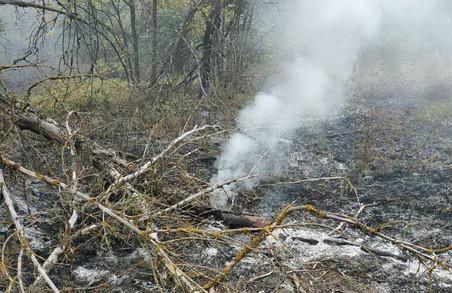 На Харківщині сталося ще 50 випадків пожеж та загорянь в природних екосистемах