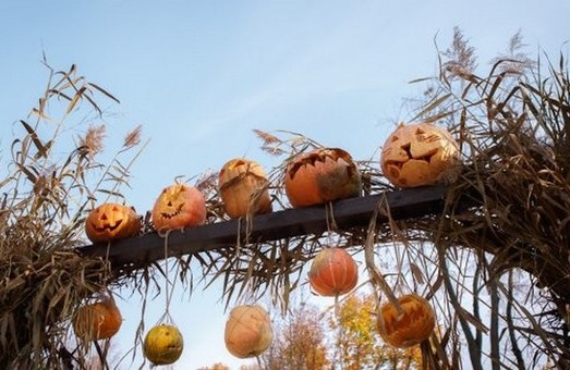 Конкурс гарбузів та ЗомбіFest: Як в Харкові відзначать Хелловін
