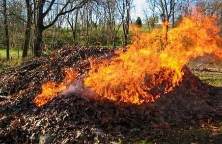 Харків'ян закликали не палити суху траву та листя