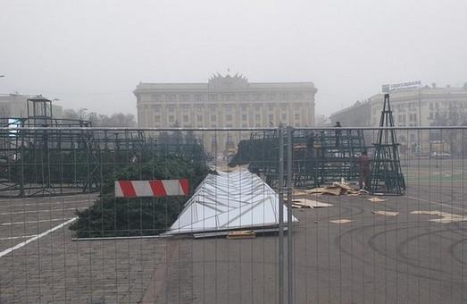 На площі Свободи почали встановлювати новорічну ялинку (ФОТО)