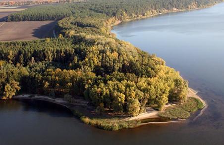 Прокуратура виявила незаконне відчуження земель лісового фонду на березі Печенізького водосховища