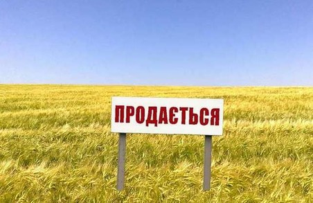 Облрада звернулась до Зеленського з вимогою провести референдум по ринку землі