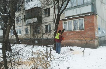 У Харкові відкрито кримінальну справу за незаконну вирубку дерев