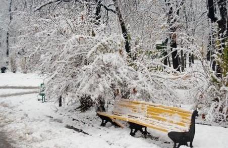 Українські синоптики прогнозують теплий січень - Укргідрометцентр