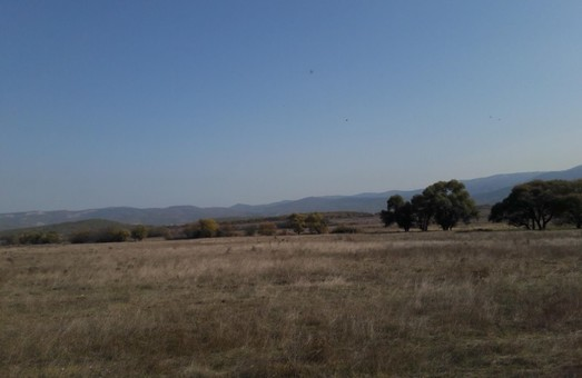 На Харківщині фермер незаконно орендував земельну ділянку: прокуратура у суді вимагає повернення землі у держвласність