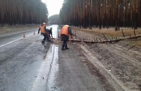 На Харківщині негода знеструмила кілька населених пунктів