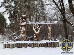 Дерибан «Гомільшанських лісів»: екс-посадовцю Держкомзему оголошено про підозру