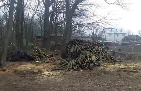 Поліція не побачила злочину в захопленні ділянки Національного парку «Гомільшанські ліси» – активісти