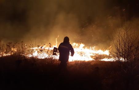 На Харківщині горить суха трава та очерет: за добу вогнеборці ліквідували 66 пожеж у природних екосистемах