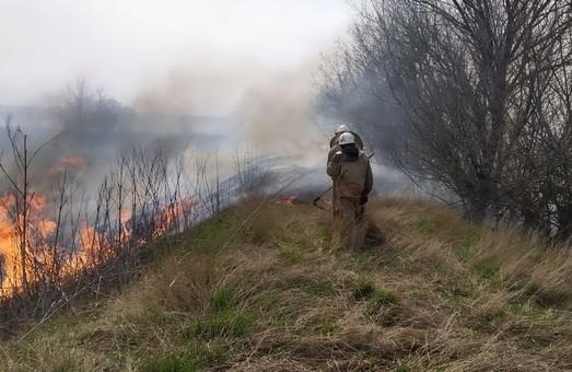 За тиждень на відкритих територіях Харківщини сталось понад 300 пожеж (ФОТО)