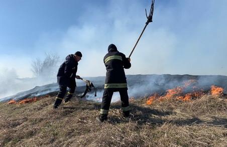 Харківщина у полум'ї: з початку квітня сталося 400 випадків загорянь в екосистемах