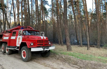 Минулої доби знищено 70 га природних екосистем Харківщини
