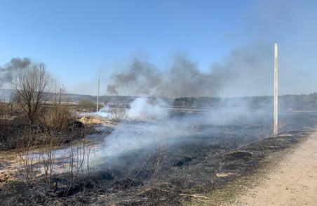 З початку року на Харківщині виникло 30 лісових пожеж: головна причина - умисні підпали сухої трави
