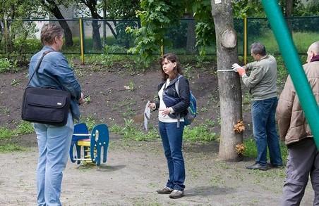 В Харкові активісти намагаються врятувати дерева в дитсадку від надмірного кронування (ФОТО)