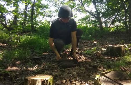 На Харківщині ліквідували три застарілі мінометні міни часів Другої світової війни