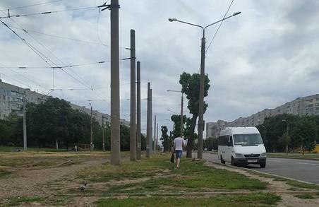 «Залиште Харкову рослини»: завтра депутатів міськради перед сесією чекатимуть активісти