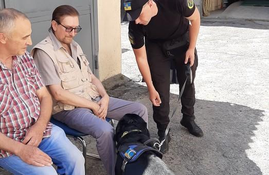 Собаки корупції непідвладні: як слобожанські митники іспит складали (ФОТО)
