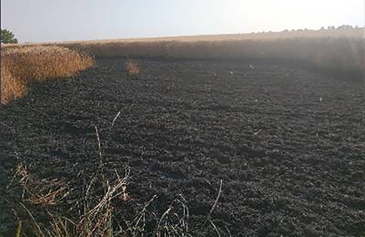 За добу харківські рятувальники здійснили 21 виїзд на гасіння пожеж сухої трави, очерету та сміття