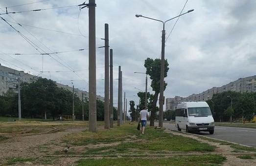 У Харкові триває варварська обрізка дерев: що залишилось від тополь за два роки (ВІДЕО)
