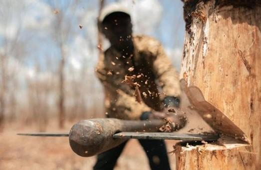 П'ять лісгоспів на Харківщині зазнали збитків від діяльності «нащадків Сиси»
