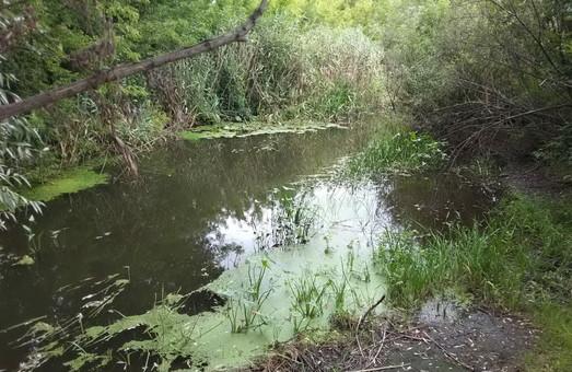 Під Харковом у річці Лопань потонув літній чоловік