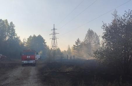 На Харківщині тривають пожежі в екосистемах: головна причина – людський фактор