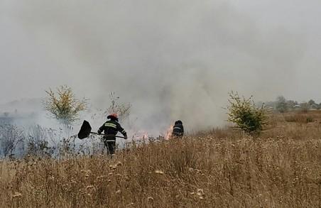На Харківщині за добу пожежі знищили близько 18 гектарів природних екосистем