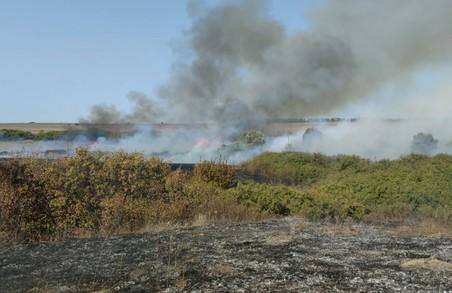 Харківські рятувальники за минулу добу ліквідували 33 пожеж на відкритих територіях
