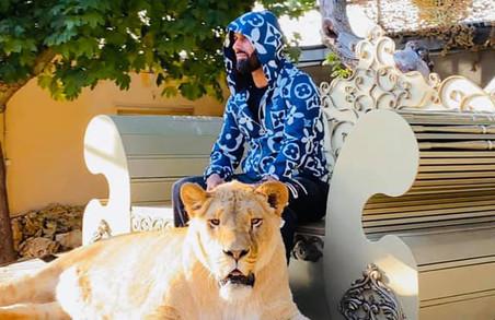 Депутат Харківської міськради від ОПЗЖ задекларував живого лева