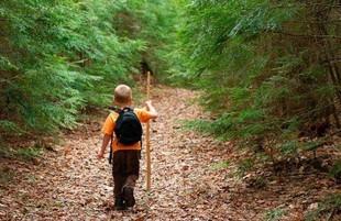 Дітям з Харкова слід поводити себе обережніше у селі